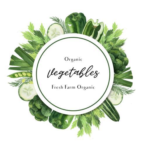 Légumes verts aquarelle affiche menu bio ferme agricole, design organique sain, illustration vectorielle aquarelle carte design vecteur