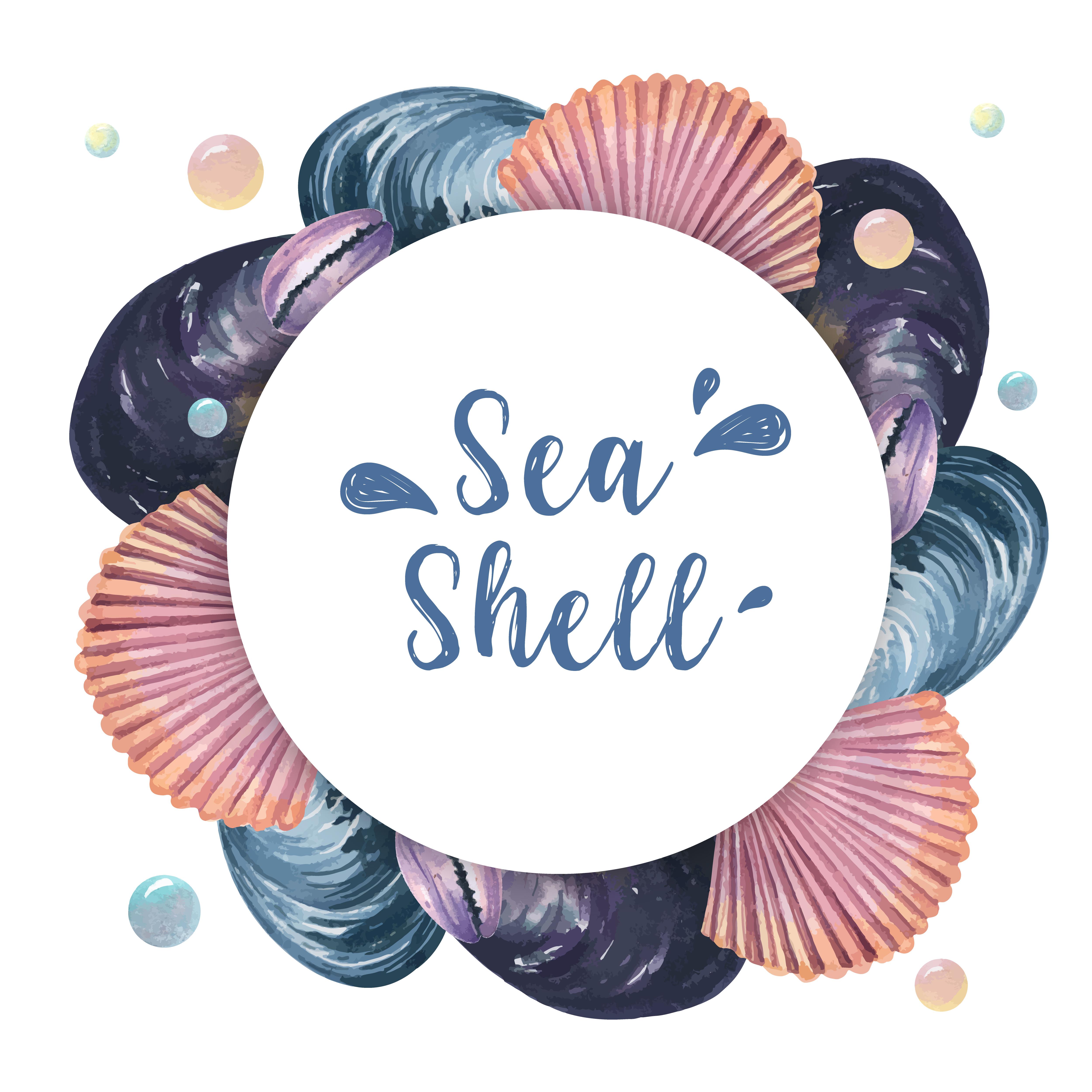 Sea Shell Wreath Marine Life Summertime Travel On The