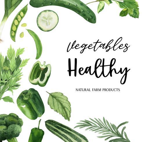 Vegetales verdes acuarela marco orgánico, pepino, guisantes, brócoli, apio, saludable con diseño texct, ilustración vectorial acuarela