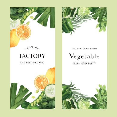 Green vegetables watercolor Organic farm fresh for food menu , aquarelle  banner card design vector illustration.