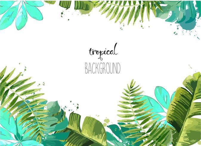 Achtergrond met tropische bladeren. vector
