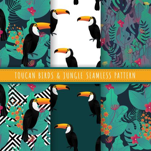Toucan birds and tropical leaf pattern seamless collection. Set of 6 green jungle background. Endless texture for gift wrap, wallpaper, web banner background, wrapping paper and Fabric patterns.