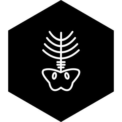 Xray-Icon-Design