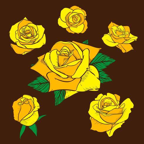 Flores rosas, capullos y hojas verdes. Set de rosas de la colección. icono de rosa y símbolo