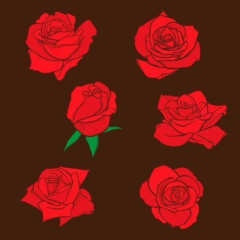 Bloemenrozen, knoppen en groene bladeren. Rozen Set collectie. roos pictogram en symbool