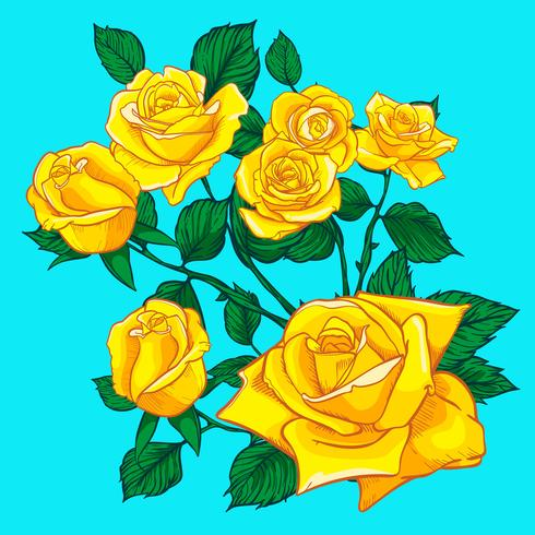 Flores rosas, botões e folhas verdes. Conjunto de rosas coleção. ícone rosa e símbolo
