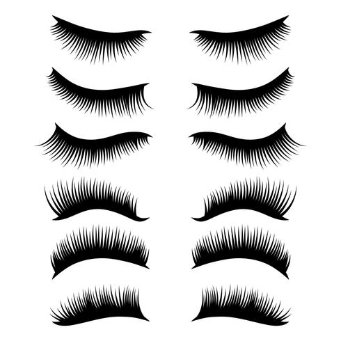 eyelashes clipart set