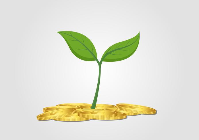 Geschäftskonzept, wachsender Baum vom Stapel der goldenen Münze