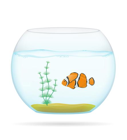 fisk i en transparent aquarium vektor illustration