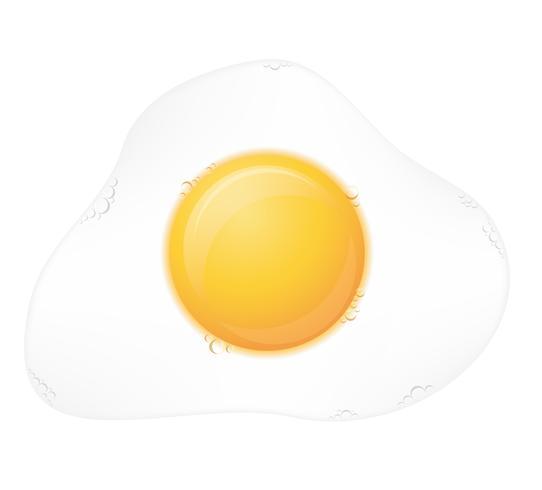Ilustración de vector de huevo frito