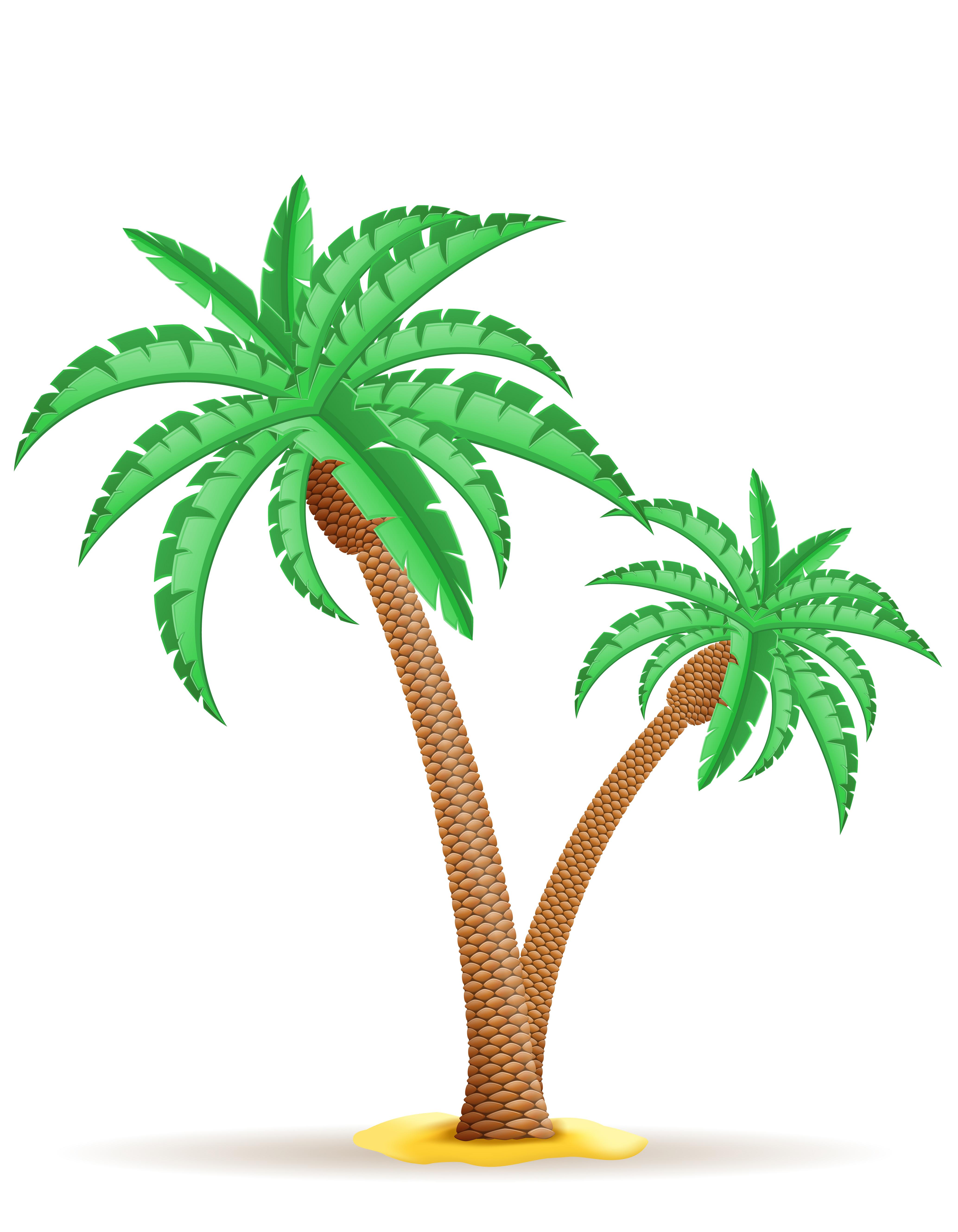 Vector Illustration Tree: Palm Tree Vector Illustration