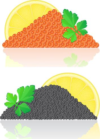 red and black caviar with lemon and parsley vector