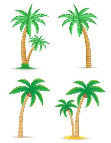 palm tropische boom vastgestelde pictogrammen vector illustratie