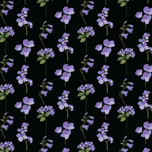 lavande violet botanique sur fond noir vecteur