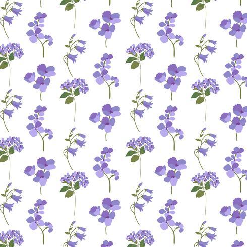 lavande violet botanique sur blanc vecteur