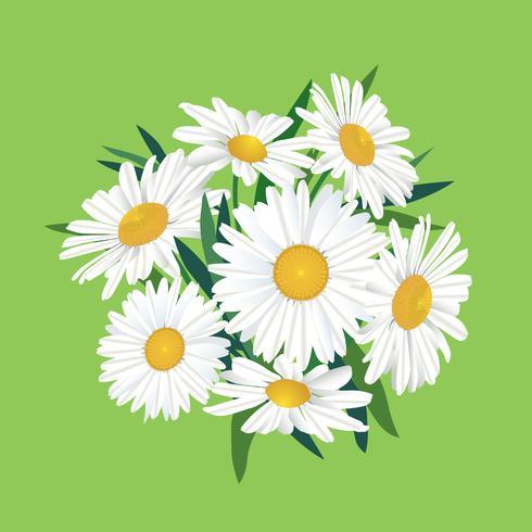 Blombukett. Blomram. Blomstra hälsningskort. Blommande blommor isolerade på bakgrunden