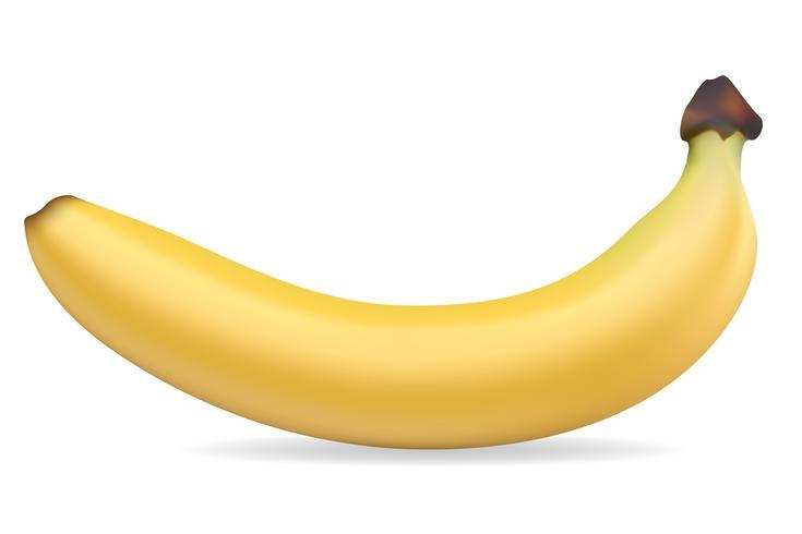 banaan vectorillustratie vector