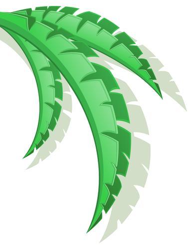 palm branch vector illustration