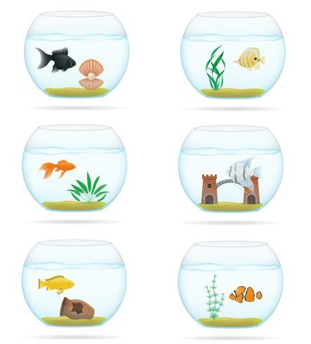 fish in a transparent aquarium vector illustration