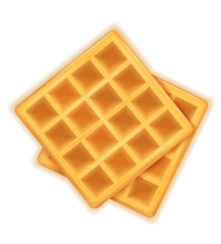belgian waffle sweet dessert for breakfast vector illustration