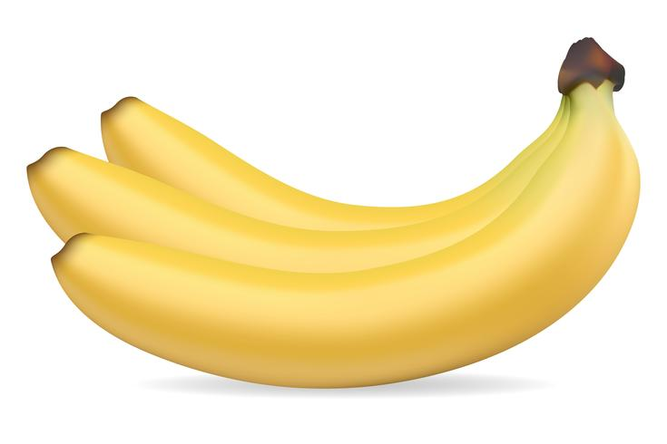 Bananen-Vektor-Illustration