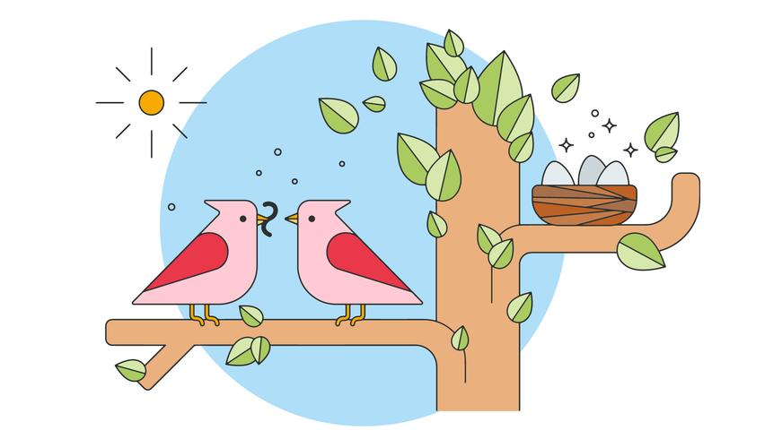 Vector de familia de aves
