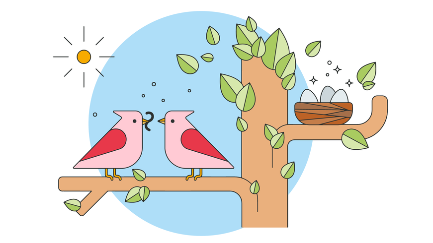 Vektor der Vögel-Familie