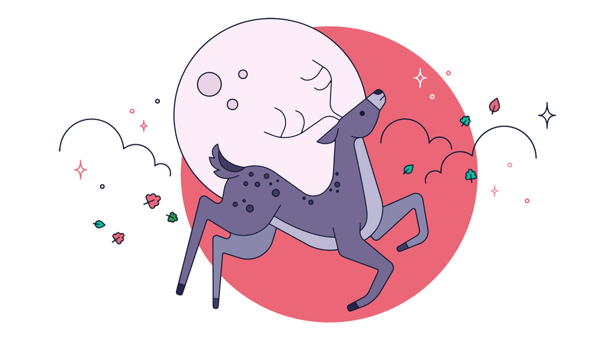Vector de ciervos en la noche