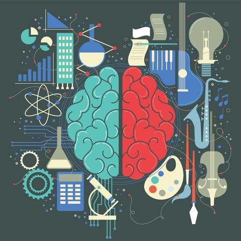 Concept de cerveau humain gauche droite