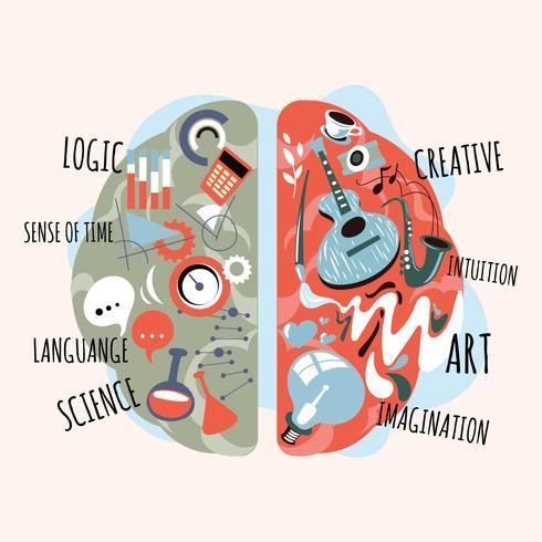 Emisferi creativi analitici e retti di sinistra del cervello