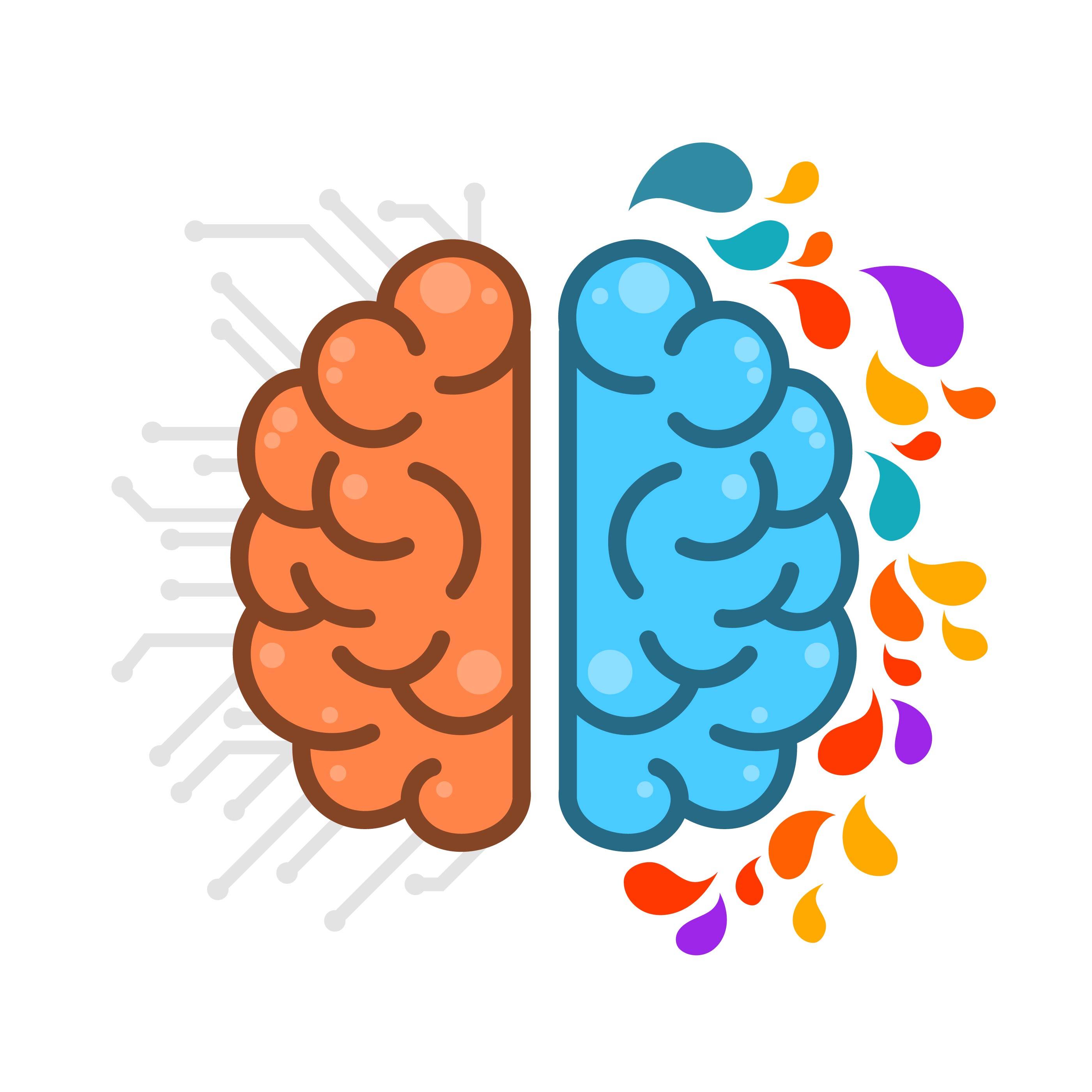Flat Simple Human Brain HemisPheres - Download Free ...