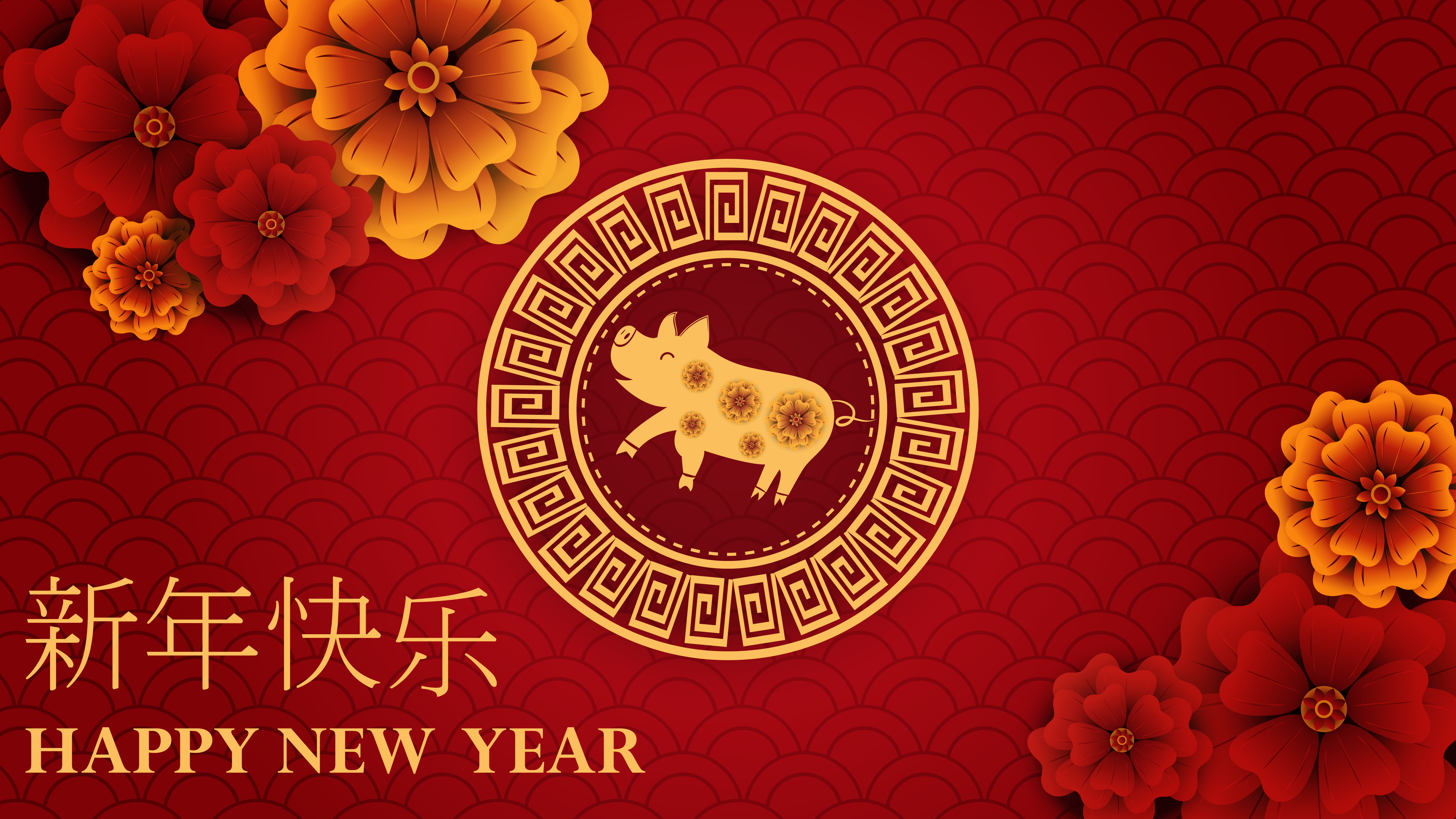 happy chinese new year of 2019 of pig on red backdrop