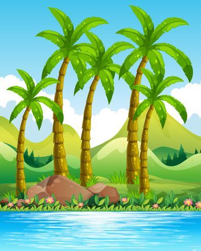 Flodscen med kokospalmer