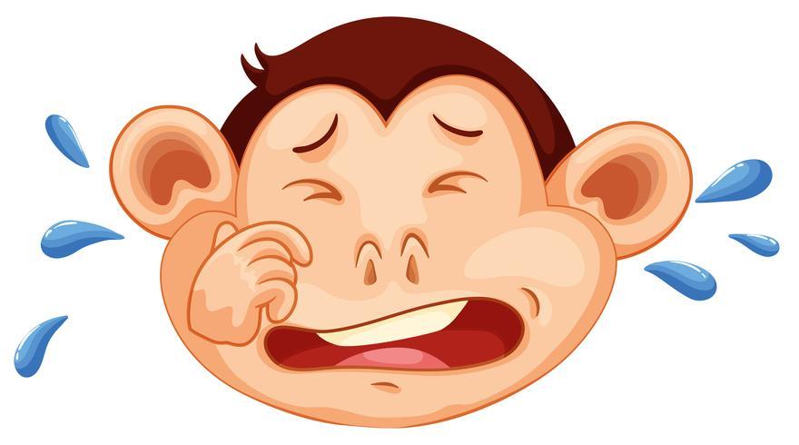 Una cara de llanto de mono
