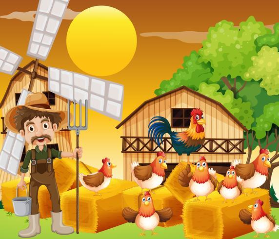 Bonde och kycklingar på gården