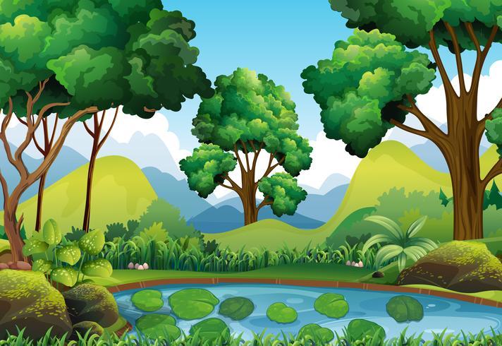 Scena della foresta con alberi e laghetto