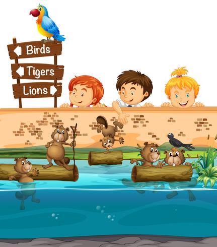 Crianças looing em castores no zoológico