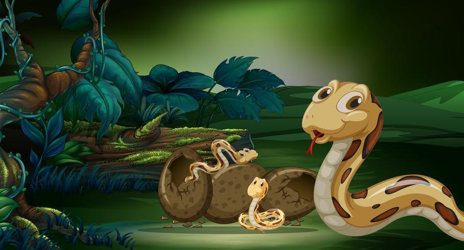Schlange und ihre Nachkommen im Wald