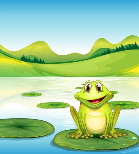 Una rana sopra la ninfea nello stagno