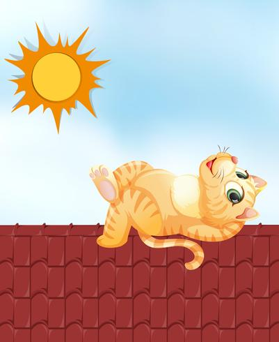 Lazy cat on the roof vector