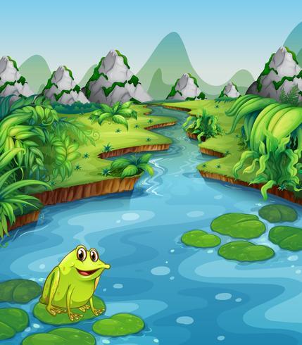 Scène de rivière avec grenouille sur feuille