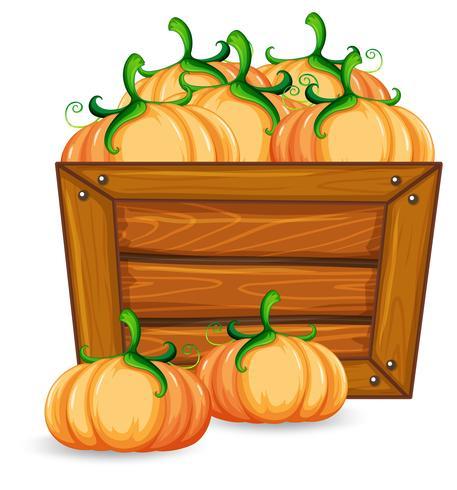 Pumpkin on wooden banner