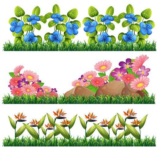 Conjunto de decoração de flores