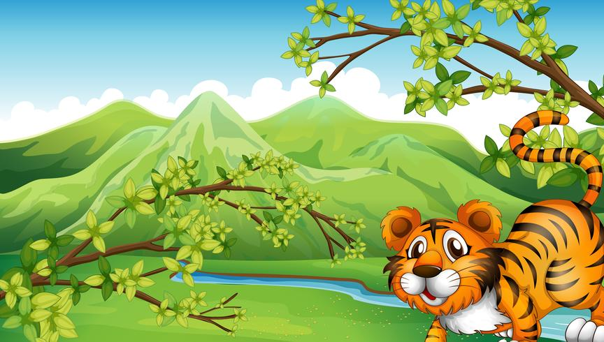 A tiger with a mountain view at the back