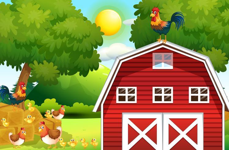 Scène de ferme avec des poulets sur la grange