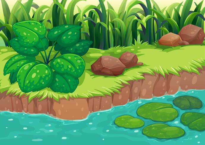 Plantas verdes ao longo do rio