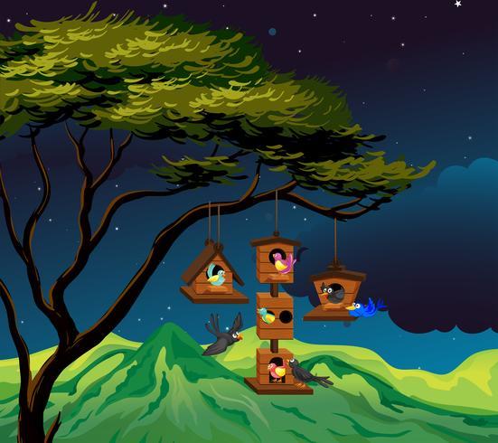 Scene with birdhouse hanging on tree