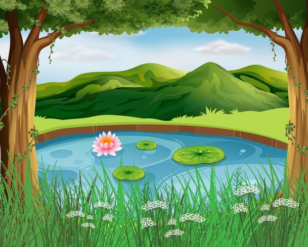 Scène de la forêt avec étang et montagnes