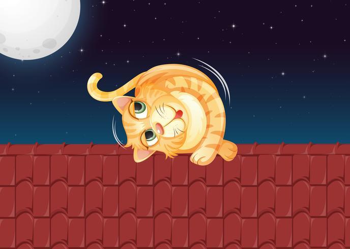 Een kat die op het dak rolt