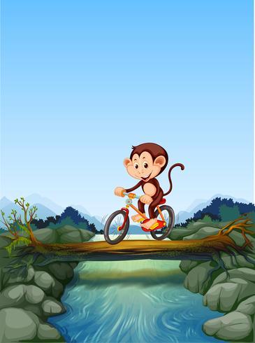 Macaco andando de bicicleta atravessando o rio